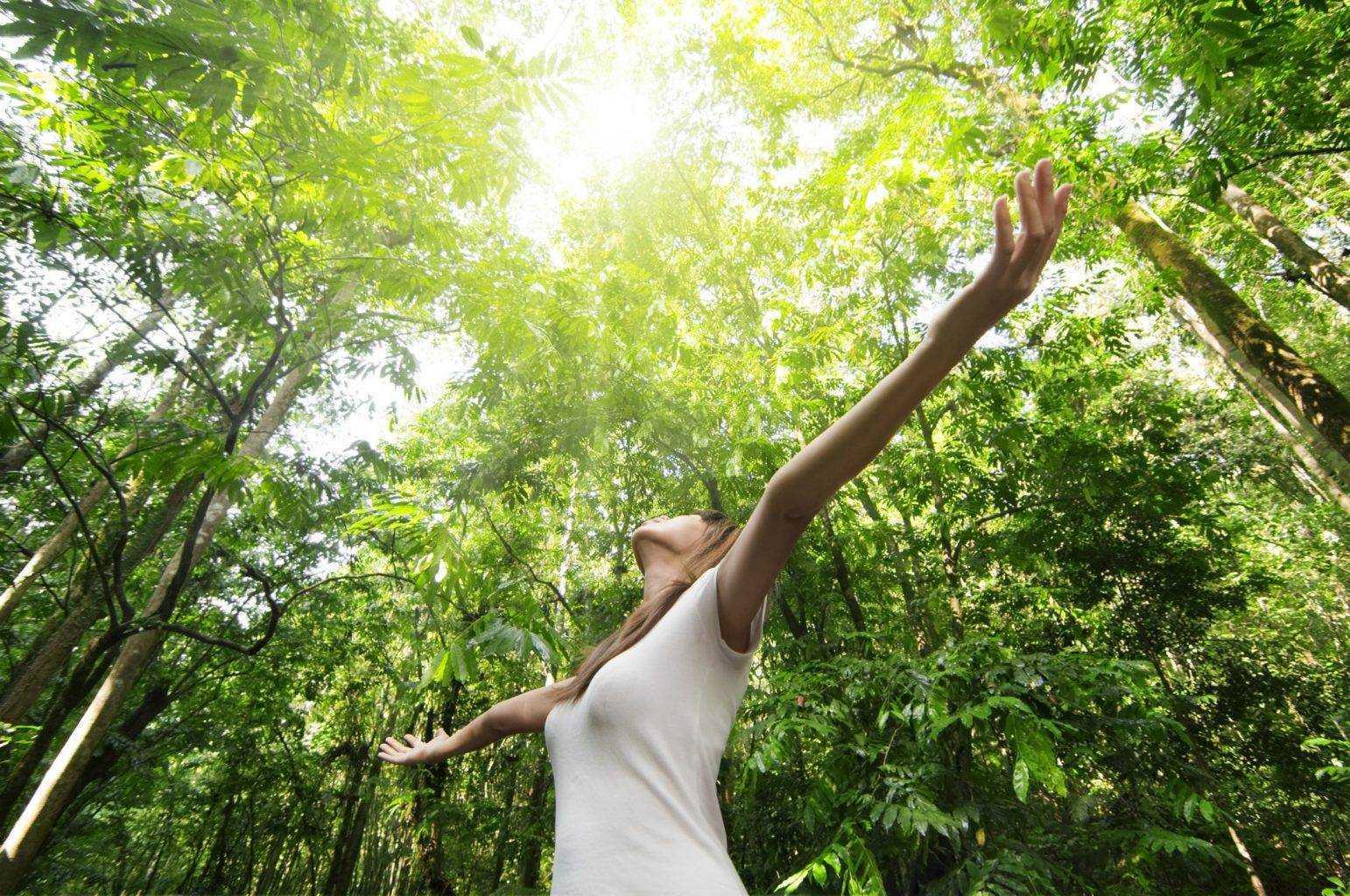 I migliori Migliori 5 prodotti per la cura e il benessere del corpo