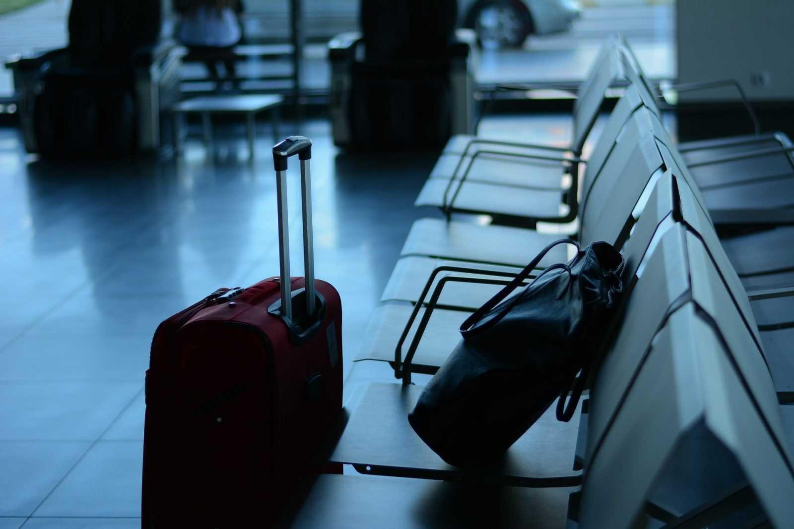 Migliori.io Top 10: Le migliori borse portabiti da viaggio